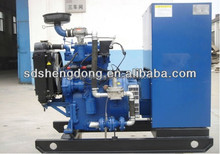 Main Technical Parameters 40kw Natural Gas Generator CE approved