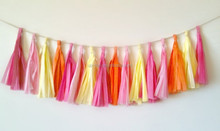 Multicolour Paper Tassel Garland for wedding decoration