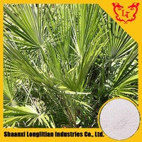 Top Quality Saw Palmetto Berry Extract / Serenoa Repens Powder 5:1,10:1,20:1