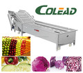 Hot sales date palm soaking washing machine or automatic fruit washing machine from Colead