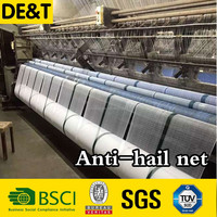 anti hail net from china factory, hail protection net, raspberry netting