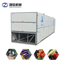 Conveyor Tunnel Onion Shrimp Soybean For Potato Chips Seed Dryer Machine