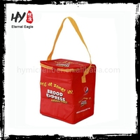 New products nonwoven bottle cooler bag, food delivery cooler bag, disposable cooler bag