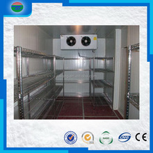 Wholesale useful low cold room freezer for meat
