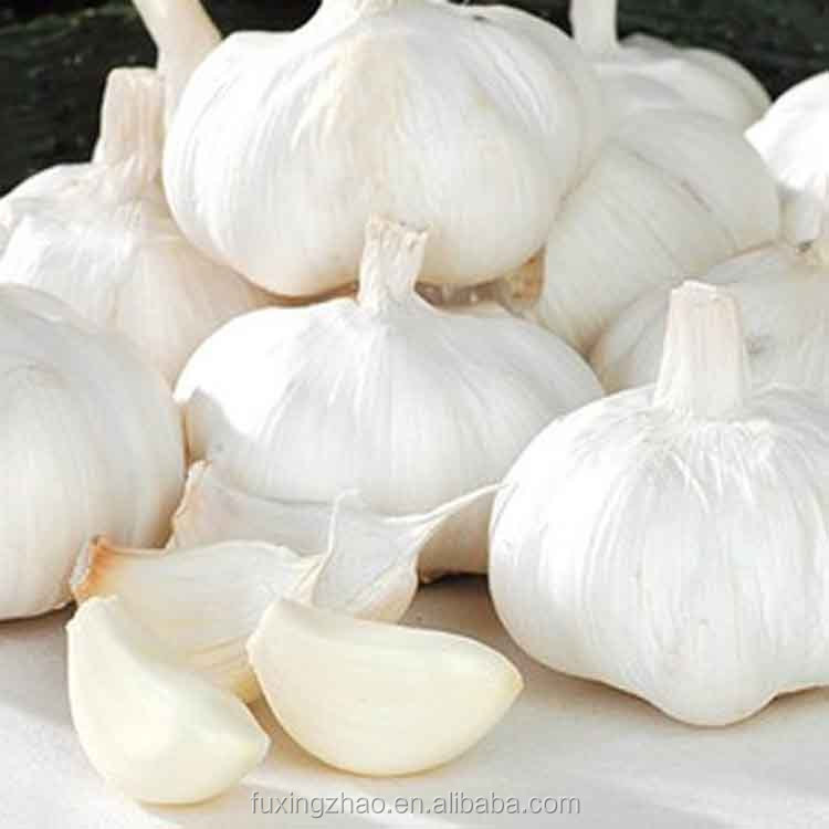 Pure White Fresh Garlic 2017 Natural Garlic