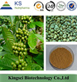 GMP Manufacturer Supply Top Quality Natural 100% Green Coffee Bean P.E. KS-29