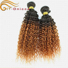 South Africa Wholesale afro brazilian kinky curly human hair extension wet and wavy full lace wigs