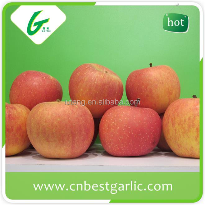 Naturally sweet fresh fuji apple from China