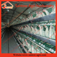 Chicken use welded wire chicken layer cages broiler feeding system