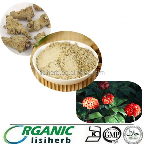 Manufacturer Supply High Quality pseudo-ginseng extract powder and Sanchi Extract For Nutrition Supplement