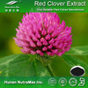 100% Natural Red Clover Extract 20% Isoflavones
