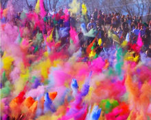 Holi One Festival ,Colour and Movement Holi Powder