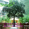 /product-detail/sj-outdoor-decorative-sjlj0594-artificial-plant-artificial-big-trees-artificial-pine-tree-60361457425.html