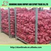 /product-detail/fresh-red-onion-yellow-onion-chinese-onion-price-60500966665.html