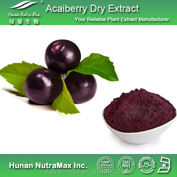 Acai Berry P.E., Acai Berry P.E. 10:1, Natural Acai Berry P.E. with Best Price
