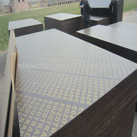 linyi construction wood panel factory plywood slab formwork for burma