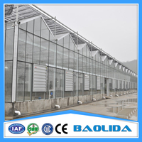 Multi-span Solar Greenhouse Siding With Polycarbonate Sheet Roofing