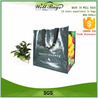 custom Green resuable fruits supermarket PP woven laminated shopping bags with logos