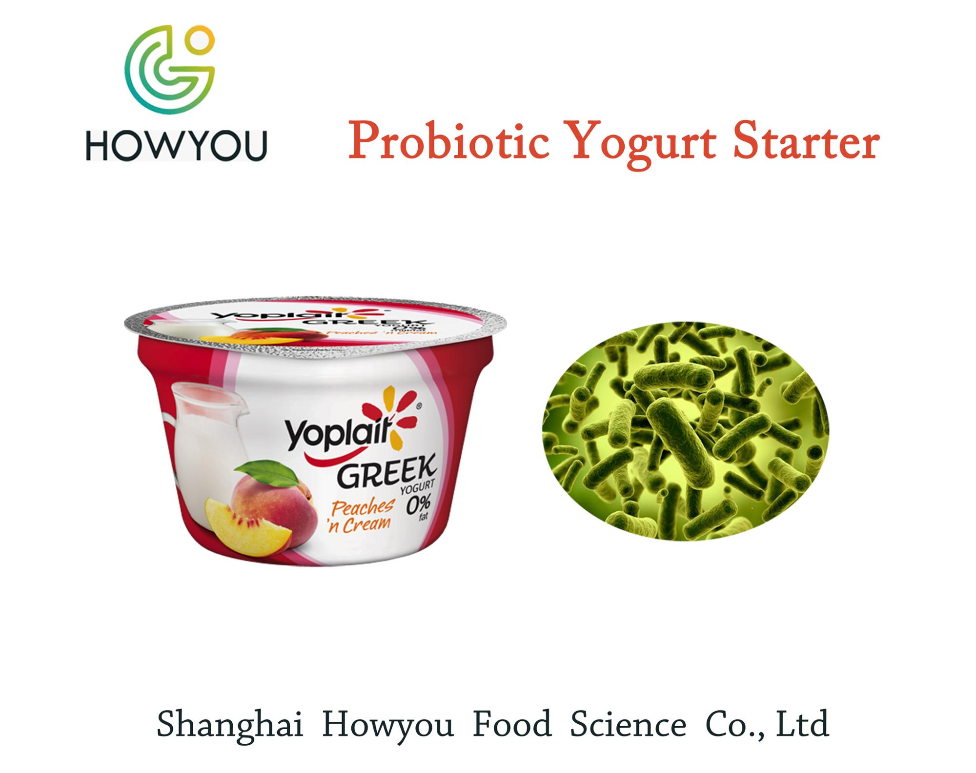 Low Price good quality yogurt powder