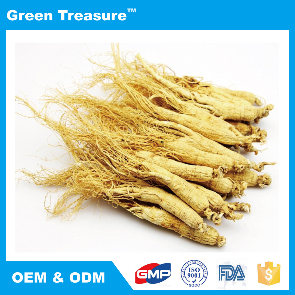 High Quality Organic White Ginseng Root with Low Price