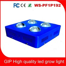 High Power cob LED Grow Lights Full Spectrum 300W LED Plant Lamp for Hydroponic/ Greenhouse/Tomato led grow light