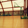 wooden surface pvc sports floor for indoor basketball court in roll