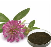 Natural Organic Red Clover Flower Extract 30% 40% Isoflavones HPLC