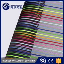 Customized color good quality OEM PET polyester net