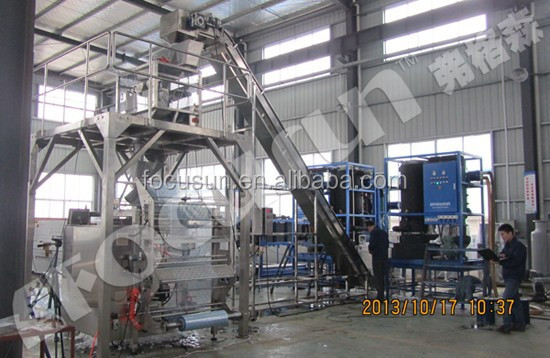 Latest technology Siemens PLC controller international standard Industrial tube ice making machine+ice packaging machine
