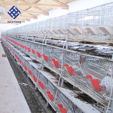 High quality 9/12/16/20/24 capacity rabbit cage in kenya farm