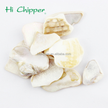 Decorative natural crushed sea shell