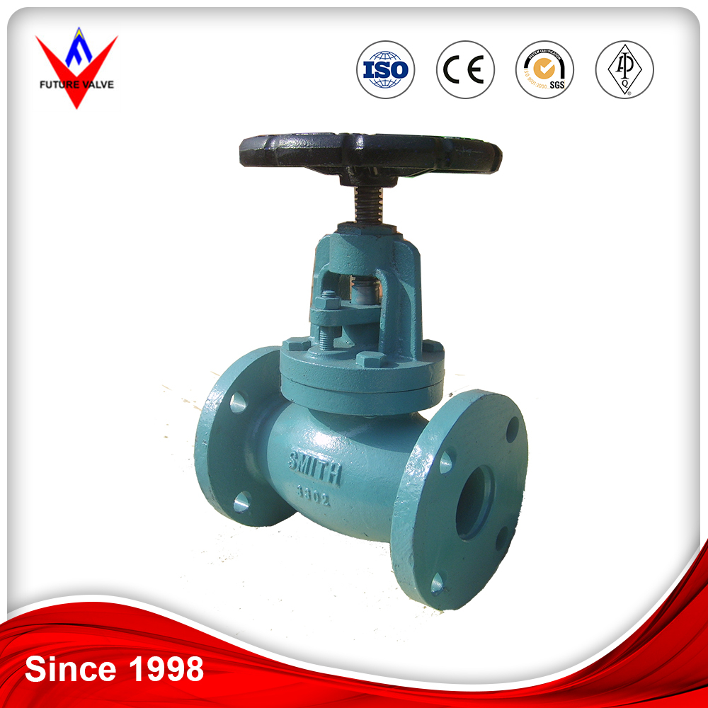 Blue Liquid Painting ANSI Cast Iron Globe Valve
