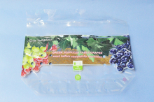 stand up zipper export fruits plastic grape bag
