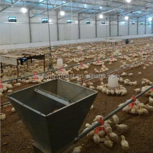Automatic poultry feeding system for broiler
