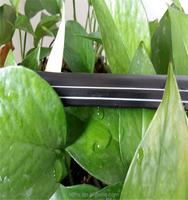 drip irrigation systems/drip line hose
