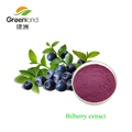 Natural Bilberry extract 10:1