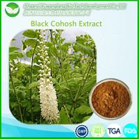 Top quality powdered black cohosh extract