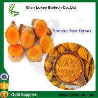 High quality Turmeric root extract powder 95% Curcumin, Bulk Pure Curcumin extract 95%