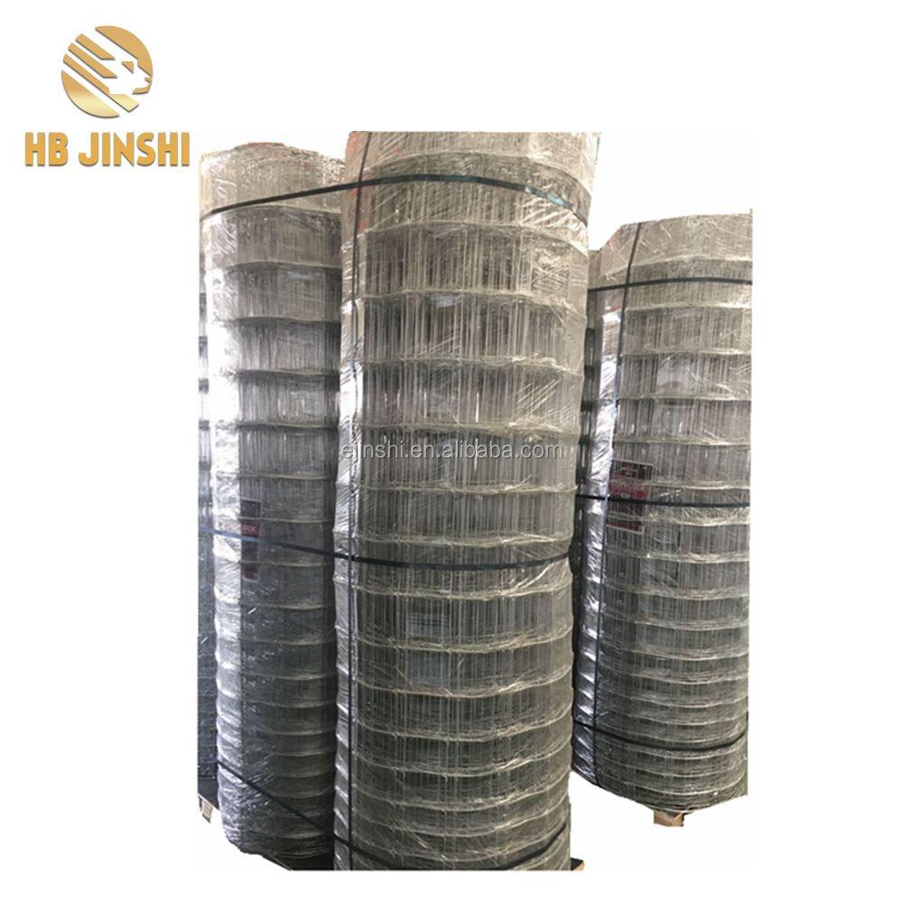 Jinshi Factory Quality Hinge Joint Cheap Galvanized Field Fence