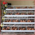 A Type,96,120,128,160 Layer Chicken Battery Cage For Sale in Kerala,Chennai,India