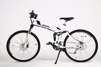 26 inch electric mountain bike with 250w Brushless hub motor beerbike