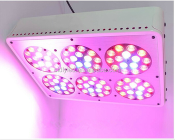 Cidly Best Place To Buy Very Popular Led Grow Lights With 200 Watt 90pcs Led Grow Light Online
