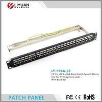 LY PP6A 02 Telecommunication Blank Cat6a