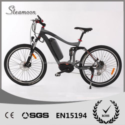 Trendy designed 36V Battery Electric Bicycle