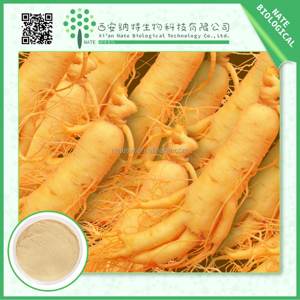 Trustworthy China supplier panax ginseng root extract ginsenosides 10:1