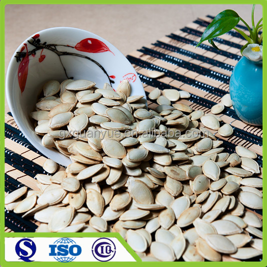 Chinese big size new crop snow white pumpkin seed price