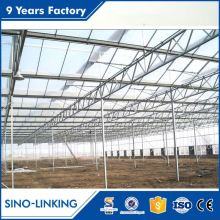 Low price modular low cost plastic-film greenhouse horticulture