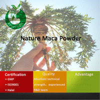 Instant maca powder/maca extract/maca coffee