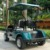 New Design Electric Golf Cart with CE certificate DG-C2(china)