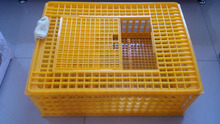 Good quality plastic cage for quail/poultry transport cage (Skype : zh-lydia )
